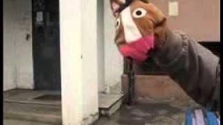 Ханни Конь (Hanni Kohl cover) Brutal Horse - Ex