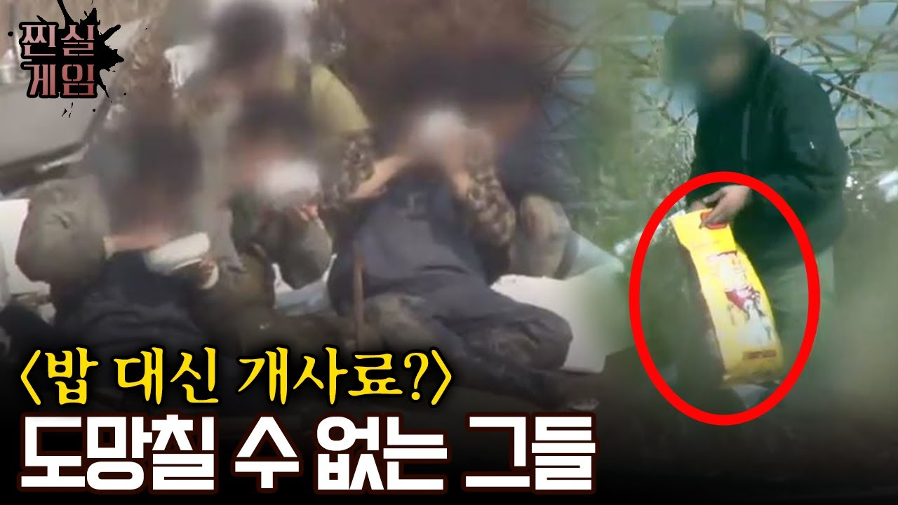 노예 홍혜진 laoliu541 korean노예홍혜진