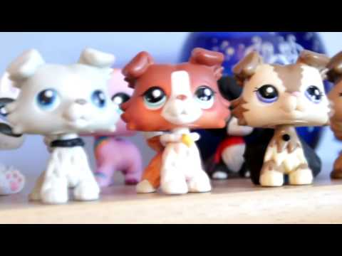 LPS - Room Tour/Studio Tour