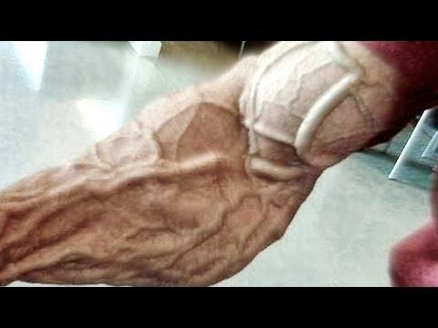 Frank McGrath - Never Surrender (Bodybuilding Motivation 2016)