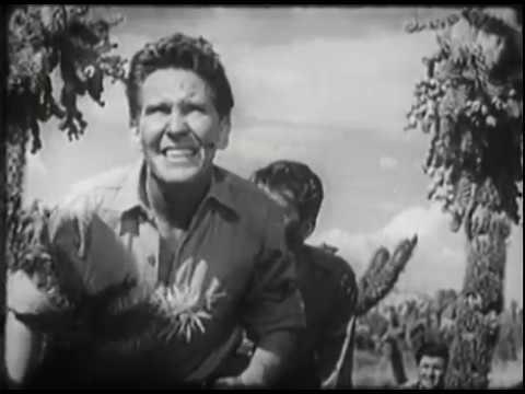 """""""Rear Gunner,"""" U.S. Army Air Forces Film, 1943"""