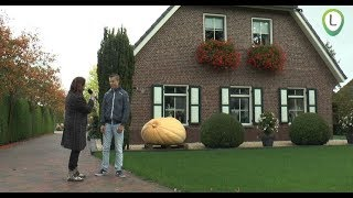 Gerjan Puttenstein Nederlands kampioen pompoen kweken