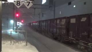 吹雪の旭川駅 DF200形牽引貨物列車通過 2019.2.7