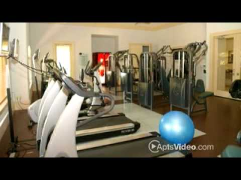 landings-at-clear-lake-apartments-in-webster,-tx-forrent.com