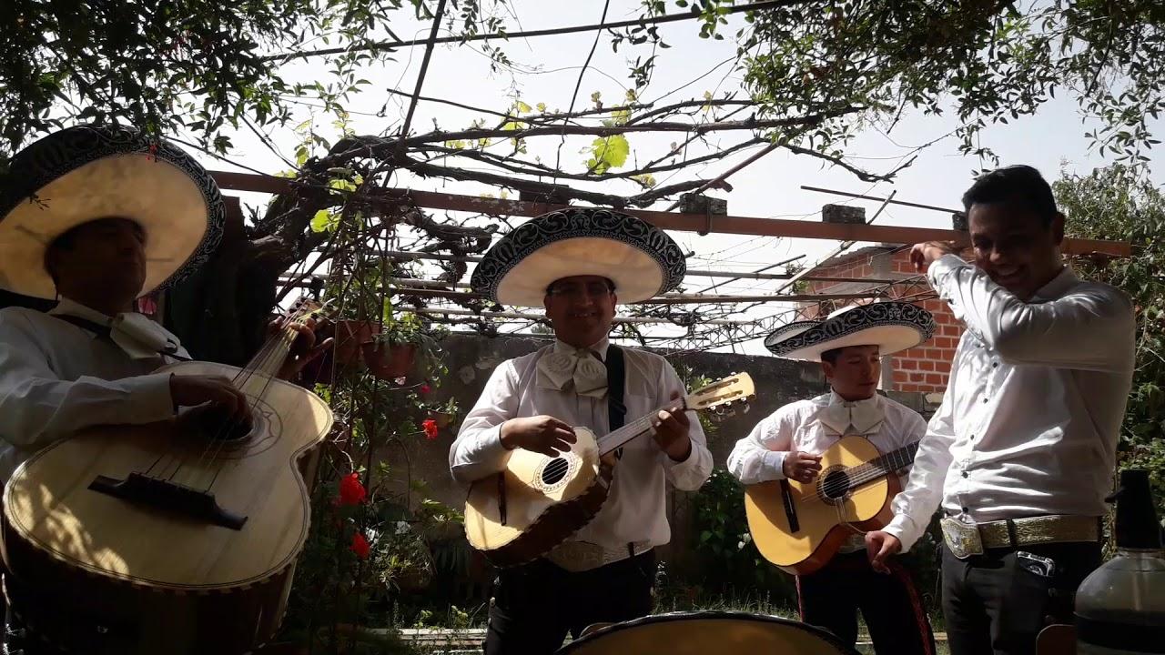 Mariachis Aguilas Aguilas De Plata Jujuy Si Nos Dejan Chords Chordify