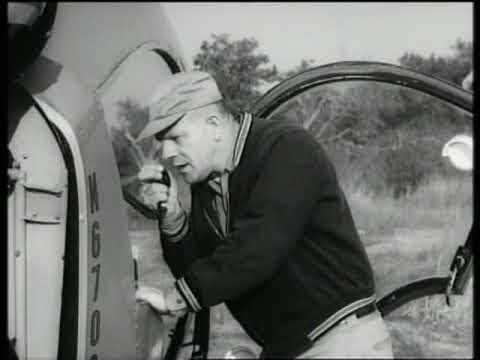 Lassie - Look Homeward (1964)