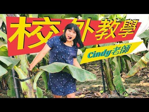 安親班Cindy老師校外教學─黃小愛LittleLove