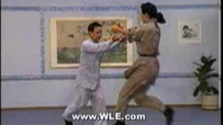 Sun Style Tai Chi Chuan Applications