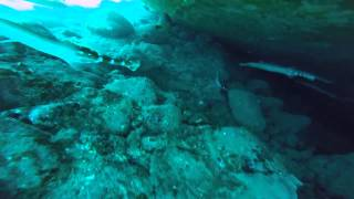 Holly Diving in Gran Canaria with Blue Water Diving July 2015