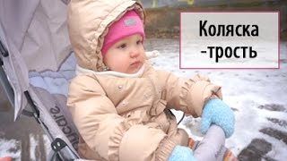 Обзор детской коляски-трости