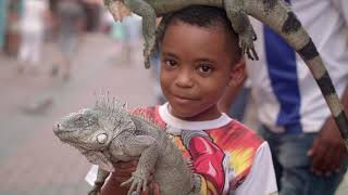 In Curacao Culture Travel Video