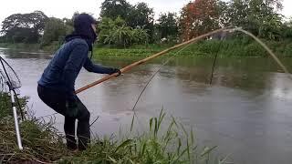 ยกยอคลองขุดปลาเข้าเป็นฝูงๆ เสียดาย ฟ้าฝนไม่เป็นใจ5555