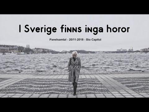 I Sverige finns inga horor - Panelsamtal på bio Capitol 20/11-2018