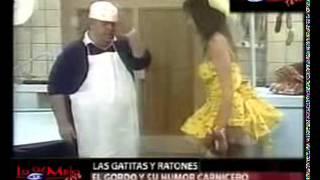 Video Jorge Porcel y sus gatitas download MP3, 3GP, MP4, WEBM, AVI, FLV Januari 2018