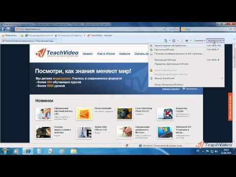Internet Explorer 8 в Windows 7 - Режим «In Private» (34/52)