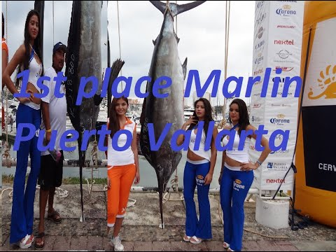 Captain Steve Torres Wins Marlin Tournament Puerto Vallarta Mexico