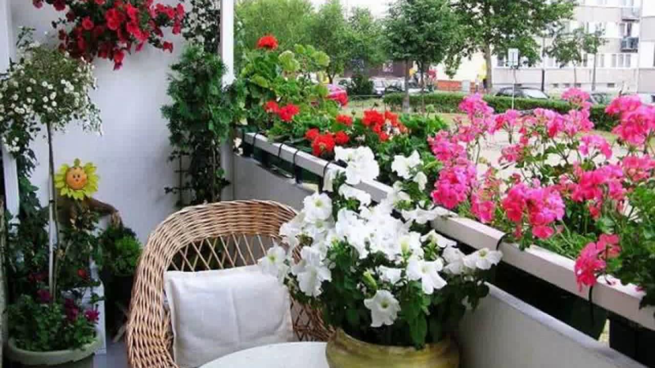 Gardening ideas in kerala - YouTube