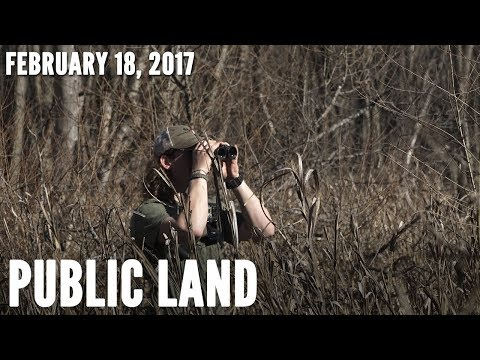 Public Land: Scouting River Bottoms For Bucks | Midwest Whitetail