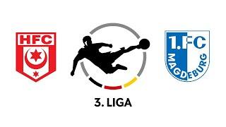Hallescher FC vs 1. FC Magdeburg / 3. Liga 10. Spieltag 2021/22