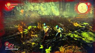 The Witcher 2: AoK EE -  The Kayran: Kayran