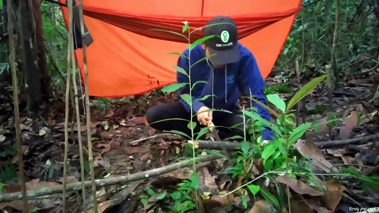 Download Bushcraft indonesia borneo forest | najor tradisional | solo mancing