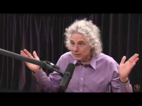 Steven Pinker on Social Media Outrage Over Factual Gender Differences