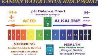 AIR KANGEN WATER MENCEGAH PENYAKIT KANKER DARI pH TUBUH YANG ASAM
