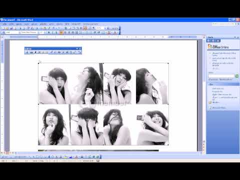 Microsoft Word - Insert picture - 011