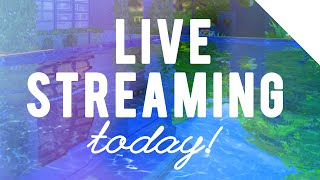 deligracy the sims 4 live stream today