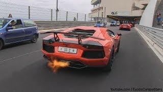 5x Lamborghini Aventador Going Crazy in Monaco - Flames | Accelerations | Revs