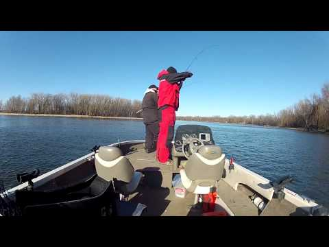 HotSpot Outdoors TV Late Fall Saugers On Mississippi River Pool 4