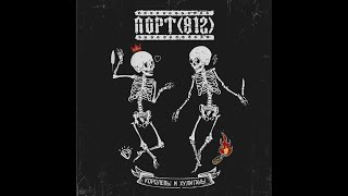 Музыкальная группа ПОРТ(812)