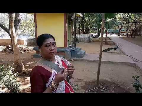 Thiruchender Saravana Poigai by Vasantha Davamani