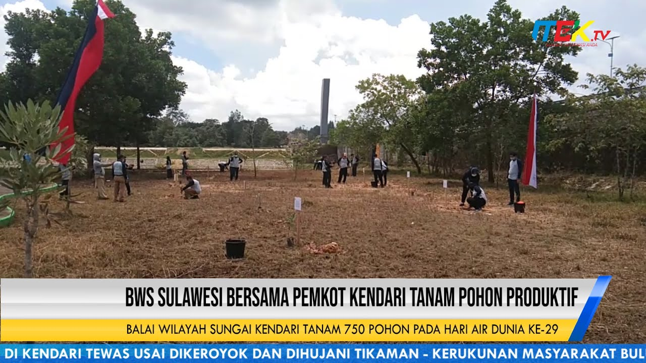 Balai Wilayah Sungai Kendari Tanam 750 Pohon Pada Hari Air Dunia Ke 29