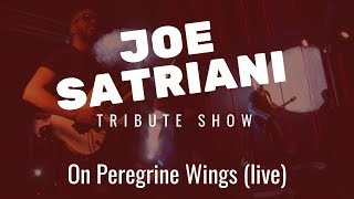 Joe Satriani Tribute Show - On Peregrine Wings (Live Band Cover)