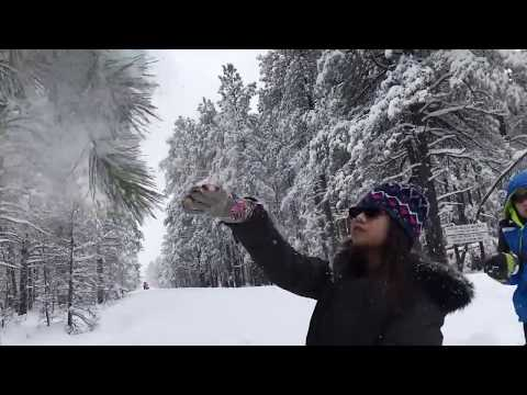 Winter 2017 - Fun with snow-Coconino National Forest