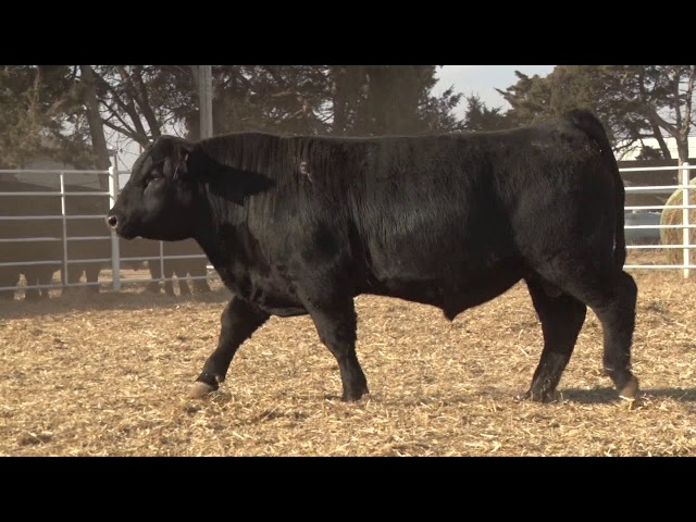 Express Ranches Lot 314