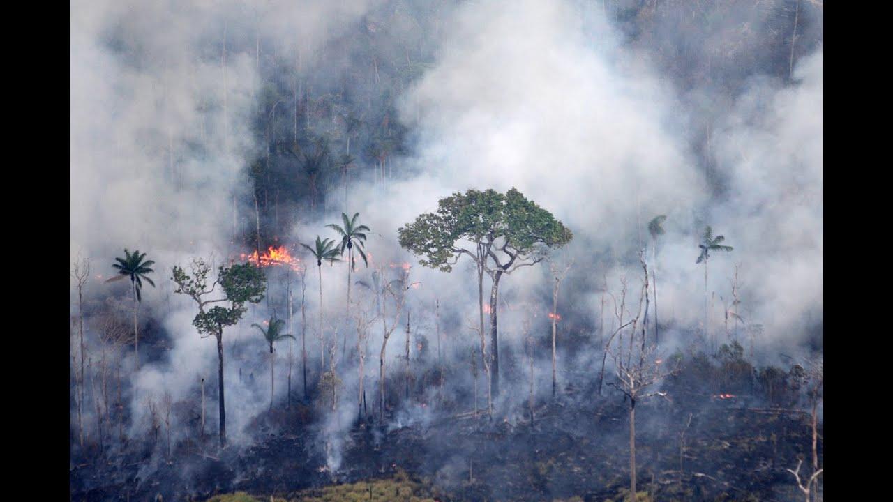 Queimadas Am áreas Protegidas Da Amazônia