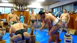 平成27年12月26日(土)伊勢ケ濱部屋の餅つきに行ってきました! 横綱、...