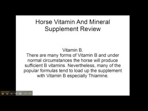 Horse vitamin and Mineral supplements Washington|Supreme Horse