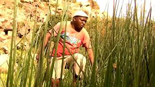 Download Lagu Usiniache Peke Yangu   Christopher Mwahangila   Official Video MP3
