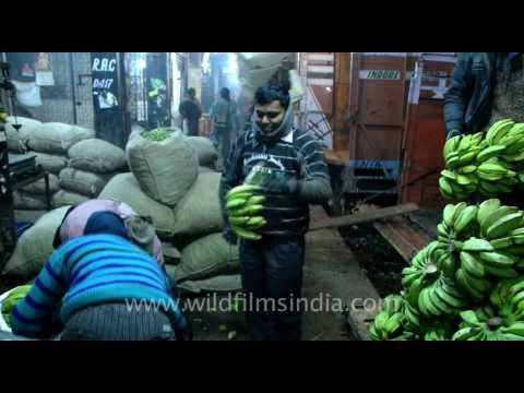 Wholesale Vegetable Market in Azadpur, New Delhi