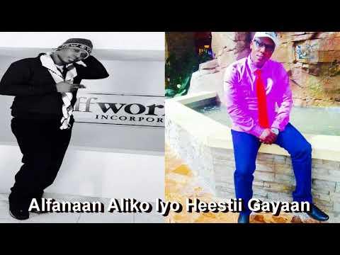 Alfanaan Aliko Iyo Hesstii Gayaan