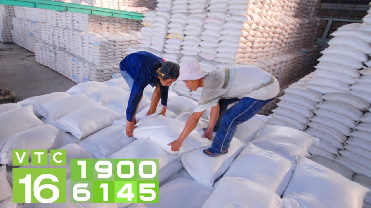 Đại biểu Quốc hội truy vấn trách nhiệm vụ xuất khẩu gạo | VTC16