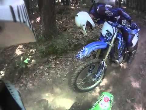 Course Poursuite Entre 2 Motocross Et La Police