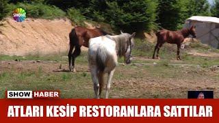 Atları kesip restoranlara sattılar