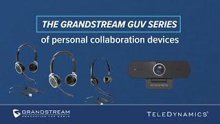 Spletna kamera GUV3100 video