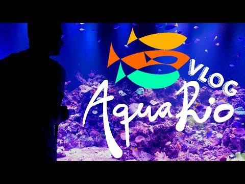 Conhecendo o AquaRio • Museu do Amanhã