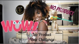 I Let My Natural Hair Air-Dry With No Product : Curly Hair Challenge