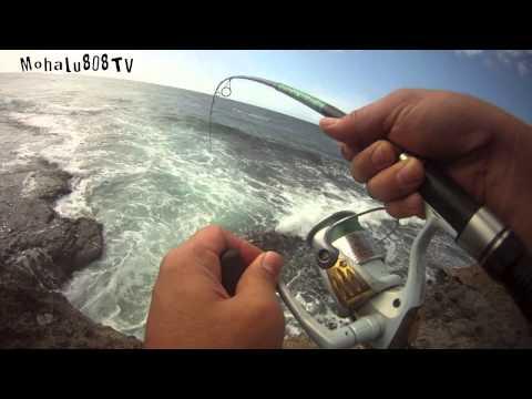 Lets Go Fishing In Hawaii Ep 1